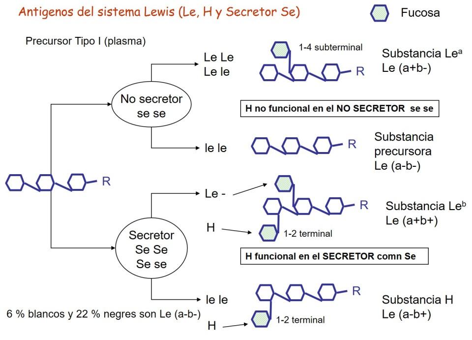 Lewis-Secretos.jpg