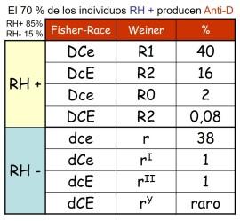 RH-2.jpg